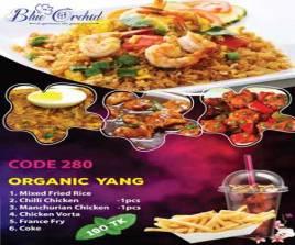 280 Organic Yang